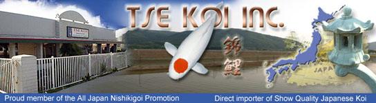 Tse Koi Inc.